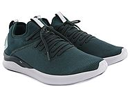 Puma Ignite Flash evoKNIT 192457