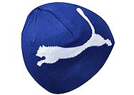 Puma Big Cat Beanie 828276