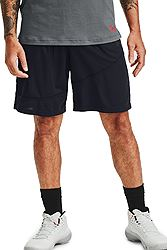 Under Armour Baseline 10IN Short 1343004